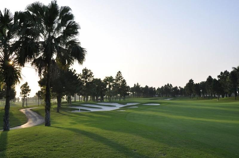 Trong quá trình chơi golf, golfer có thể nhìn thấy chim vạc hoặc linh sam