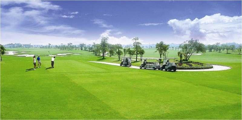 Sân golf khi đi vào hoạt động