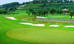 thiết kế sân golf