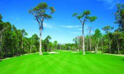 Sân golf Phú Quốc: Những ưu điểm nổi trội và bảng giá chi tiết